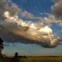 Опустилось небо низко-низко :: Светлана Рябова-Шатунова