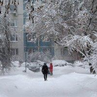 Зимой в парке :: Жанна