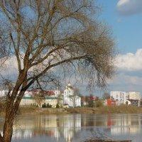 Половодье Весны..... :: Наталья Полочанка