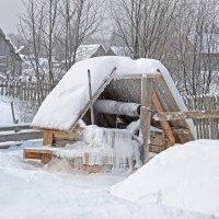 Холодно :: Роман Пацкевич