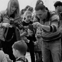 Фотографы на выставке кошек. :: Валентина Налетова
