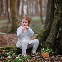 весенний лес :: Женечка Зяленая
