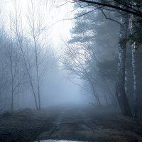 Утренний туман :: Алексей Строганов