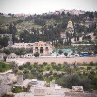 Со стен Иерусалима :: Елена Третьякова