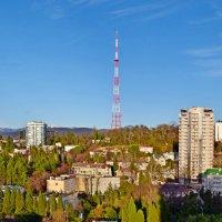 Город Сочи :: Геннадий