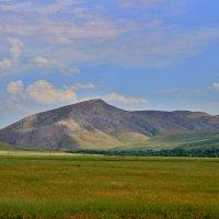 Южно-Казахстанская область :: Roman PETROV