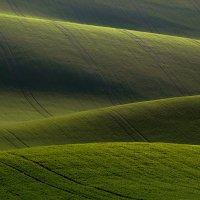 Закат в полях Южной Моравии :: Андрей Лукашенко