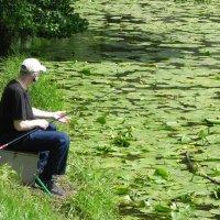 На рыбалке. :: Aleksandr