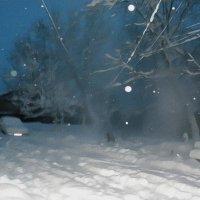 Зимние зарисовки :: Роман Савоцкий