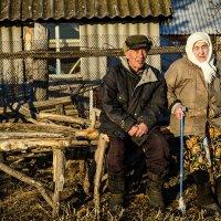 В лучах уходящего солнца... :: Влад Никишин