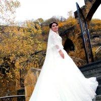Невеста Амина :: Z-video Студия