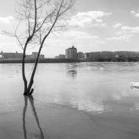 Ледоход закончился :: Валерий Михмель