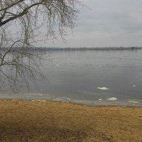 Волга в районе Самары :: IURII