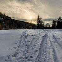 Валенки домой дорогу знают. ) :: Сергей l