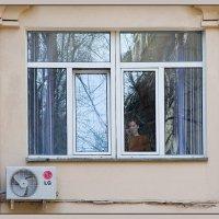 Ах, эта девушка в окне... :: Михаил Розенберг