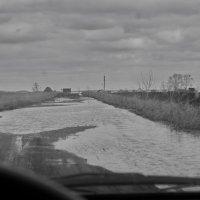 Это не канава, это дорога. :: Михаил Полыгалов