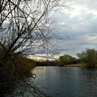 Весенний речной пейзаж :: Татьяна Королёва