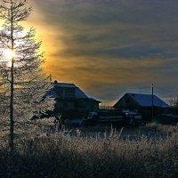 Мороз и солнце :: Александр Велигура