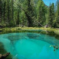 Гейзерное озеро :: Виктор Четошников