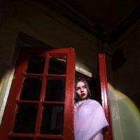 Выходя из красных ворот :: Женя Рыжов