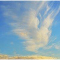 Причудливые облака. :: Paparazzi