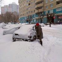 Возврат зимы! :: Андрей Синицын