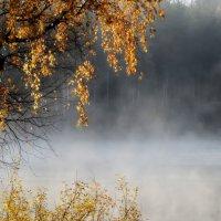 Утром осенним...... :: Юрий Цыплятников