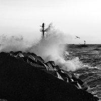 На Балтике штормит :: Леонид Соболев