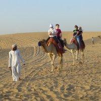 На верблюдах ползли по пескам :: Raduzka (Надежда Веркина)