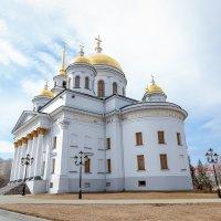 Александро-Невский собор :: Андрей Неуймин