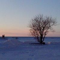 На набережной Белого моря :: Ирина Л