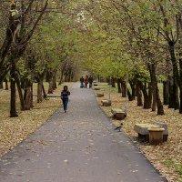 Осень в городе.5. :: Юрий Карелин