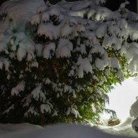Зимний вечер. :: Serge Lazareff