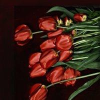 вечная тема красное на чёрном :: Роза Бара
