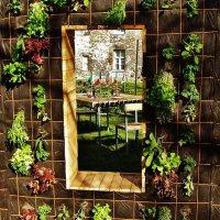 Экспозиция на Фестивале цветов :: Aida10