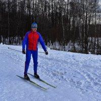 Лыжник :: dindin