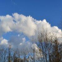 Весеннее небо :: Александр Сапунов