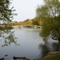 Осенний пруд :: Наталья Булыгина (NMK)
