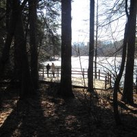 Озеро Бездонное в Серебряном Бору :: alek48s