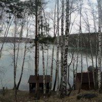 Заброшенная красота озера Рица в Подмосковном городе Дзержинский. :: Ольга Кривых
