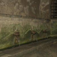 Древнеримский лаваториум (публичная прачечная) 1 :: Олег Чемоданов