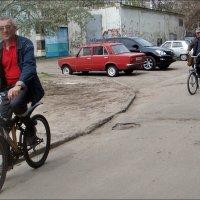 Привычный способ передвижения :: Нина Корешкова