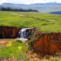 Ю. А. Р. Природа Африки. :: Jakob Gardok