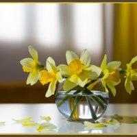 Весна в жёлтом :: Борис Ряузов