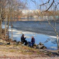 Хорошо сидим...  4 апреля...  Киев :: Валентина Данилова