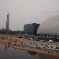 Берег Финского залива в парке 300-летия Спб :: Svetlana Lyaxovich