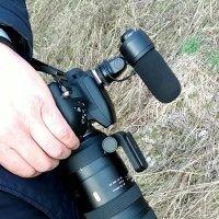 Фото и видео :: Валерий Шурмиль