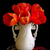 Букет тюльпанов :: Nata