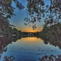Большой пруд. Июнь.Закат. :: Юлия Смирнова