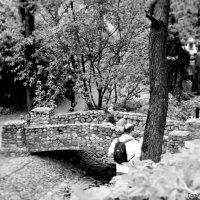 мост :: Таня Новикова